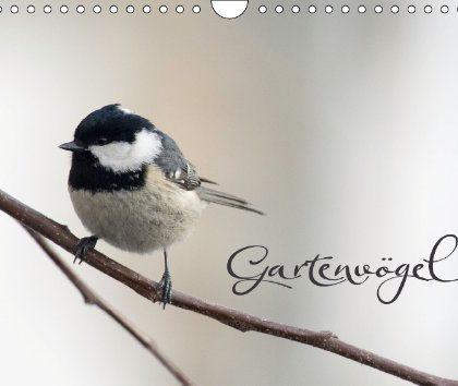 Gartenvögel – Mein erster Kalender ist verfügbar!