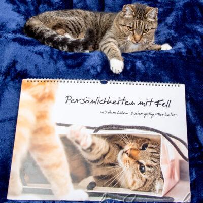 Wer könnte seinen Kalender besser präsentieren?
